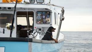 Toughest Fishermen photo