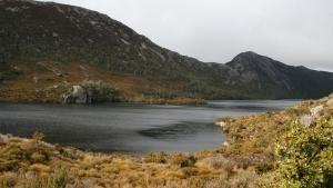 Alla scoperta della Tasmania foto