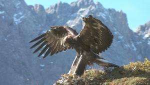Alpi segrete foto