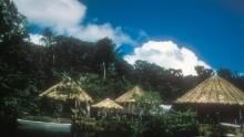 La gallery di Amazzonia: viaggio nella Foresta programma