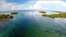Cuban Paradise Program