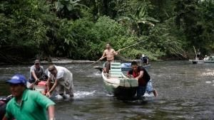 في أدغال باناما صورة