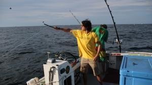 من يحصل على السمك صورة