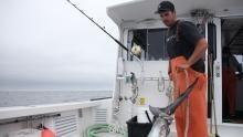 الصيد الأخير برنامج