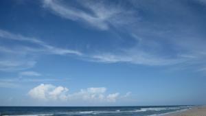 آشفتگی در فلوریدا عکس