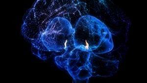 بررسی مغز عکس