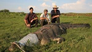 Australian Crocodiles photo