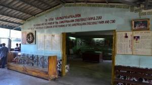 هیولاهای بانگوک عکس