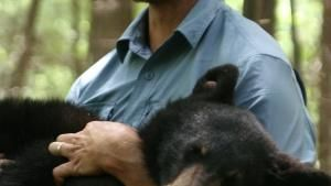 The Black Bear Catcher photo