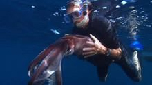 巨魷對戰抹香鯨 Squid Vs. Whale 節目