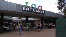 Hayvanat Bahçesi Sırları SAYFAYA GİT