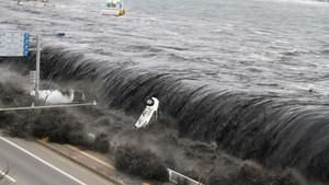 Witness: Japan Disaster