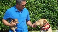 金牌馴狗師1 Dog Whisperer 1 節目