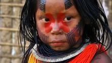 亞馬遜在野 Wild Amazon 節目