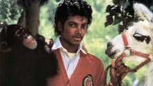 Michael Jackson And Bubbles: The Untold Story show