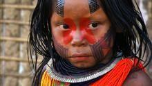 野性亞馬遜 Wild Amazon 節目