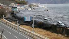 Japans Erdbebenkatastrophe Programm