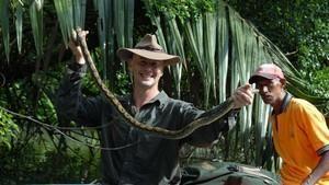 Najgroźniejsze węże Azji
