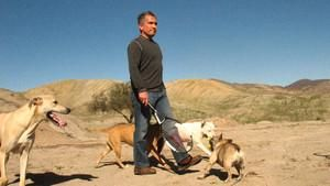 The Dog Whisperer 4 show