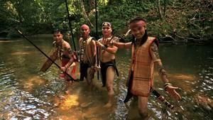 Les rescapés de Bornéo