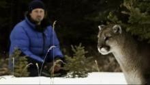 Expedition Wild Programm