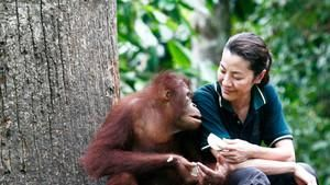 Great Apes With Michelle Yeoh