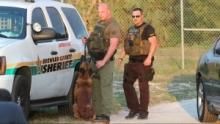 Unleashed: K9 Broward County show