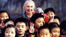 Jane Goodall:China Diary show