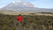 Faszination Afrika: Der Kilimandscharo Programm