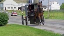 В мире амишей: вне закона программа