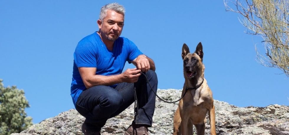 Cesar Millan&#039;s Leader Of The Pack
