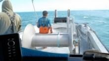 Alaszkai halháborúk film