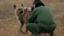La reina de las hienas Serie
