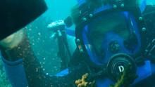 Dive Detectives show