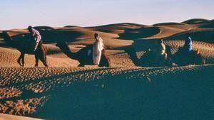 撒哈拉 Sahara