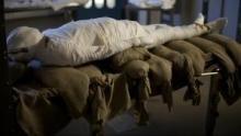 Mumie - Das Projekt Programm