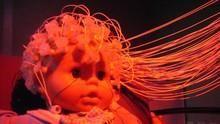新生兒身體密碼 Science Of Babies 節目