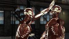 Ciência das Artes Marciais programa