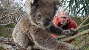 Destination Wild : Australie Voir la fiche programme