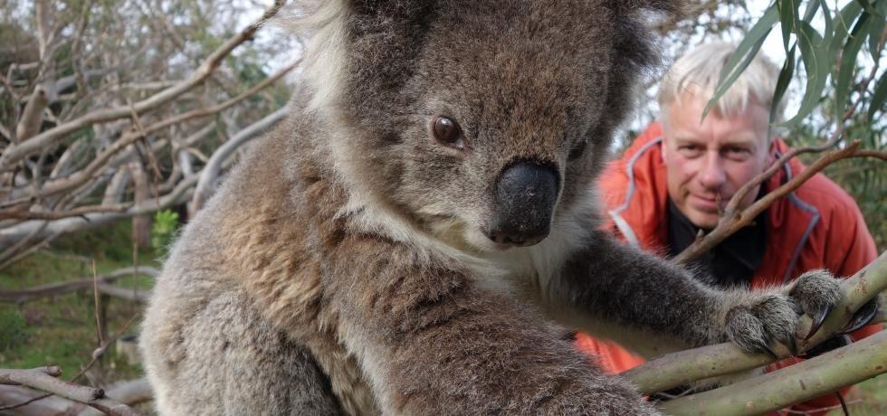 Destination Wild : Australie
