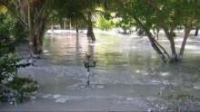 Tsunami - Der Tag der Katastrophe Programm