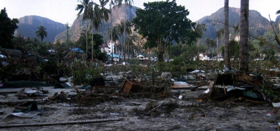 海嘯‧十年過後