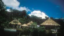 Cesta do Amazonie pořad