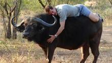 水牛戰士 Buffalo Warrior 節目