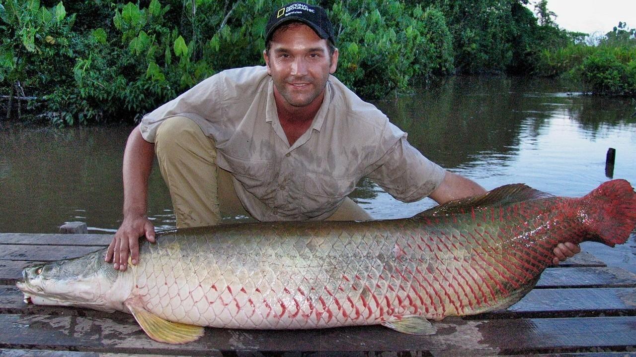 尋找亞馬遜大魚 QUEST FOR THE MEGAFISH OF AMAZON