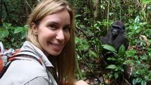 Le secret des gorilles Voir la fiche programme