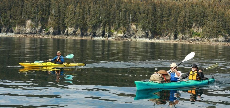 Preživljavanje na Aljasci