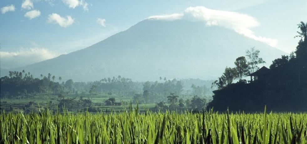 Destination Wild : Indonésie
