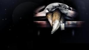 Autópsia ao T. rex