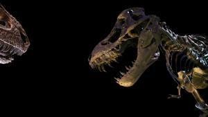 T. rex: túlélni mindenáron